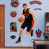 Andrea Bargnani Wall Decal