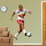 Thierry Henry 2010 Wall Decal