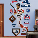 Carlton Fisk White Sox Wall Decal