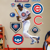 Andre Dawson Cubs Wall Decal
