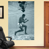 Ali Underwater Mural Wall Decal