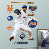 Johan Santana Wall Decal