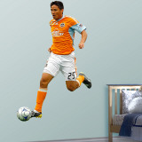 Brian Ching   Wall Decal