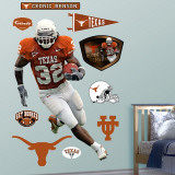 Cedric Benson Texas Wall Decal