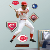 Johnny Bench Wall Decal
