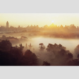 Mist Over the Sheep Meadow Wall Decal