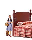 Dorothy & Toto Lepicí obraz na stěnu