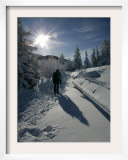 A Hiker Walks Beside Snow Covered Trees Framed Photographic Print by Christof Stache