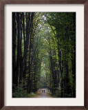 Residents of Moldova Walk Through a Park in Downtown Chisinau, Moldova Framed Photographic Print