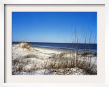 Pristine Dunes on Jekyll Island, Georgia Framed Photographic Print by Giovanna Dell'orto