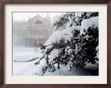 The New Jersey Statehouse Shown Framed Photographic Print