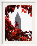 The Washington Monument Surrounded by the Brilliant Colored Leaves Framed Photographic Print by Ron Edmonds