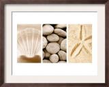 Beach Patterns Triptych Art