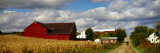 Amish Farm Buildings and Corn Field Along Country Road, Ohio Wall Decal