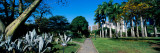 Park in a City, Caracas East Park, Caracas, Venezuela Wall Decal by  Panoramic Images
