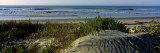 Panoramic View of a Beach, Kiawah Island Golf Resort, Kiawah Island Wall Decal by  Panoramic Images