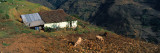 House at The Mountainside, San Rafael De Mucuchies, Merida State, Andes, Venezuela Autocollant mural par  Panoramic Images