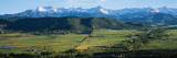 Field in Front of Mountains, Sneffels Range, Colorado Wall Decal by  Panoramic Images