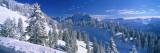 Alpine Scene, Bavaria, Germany Decalcomania da muro di Panoramic Images,