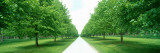 Avenue at Chateau De Modave, Ardennes, Belgium Wall Decal by  Panoramic Images