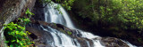Water Cascading Over Rocky Cliffs, Laurel Creek Falls, Great Smoky Mountains National Park Wall Decal