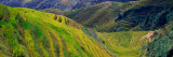 Rice Paddy Terraces on Rolling Hills, Longsheng Area, China Wall Decal