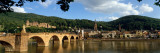 Heidelberg, Germany Wall Decal by  Panoramic Images
