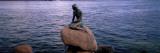 Little Mermaid Statue On Waterfront, Copenhagen, Denmark Wallsticker af Panoramic Images,