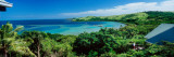 Trees at The Coast, Nananu-I-Ra Island, Fiji Wall Decal by  Panoramic Images