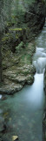 High Angle View of a Waterfall, Mt Timpanogos, Wasatch Mountains, Utah Wall Decal by  Panoramic Images