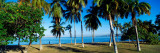 Palm Trees On The Beach, Puerto La Cruz, Anzoategui State, Venezuela Autocollant mural par  Panoramic Images