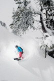 Snowboarder-Under Tree Print
