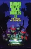 Teenage Mutant Ninja Turtles 2: The Secret of the Ooze Masterprint