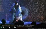 Memoirs of a Geisha Masterprint