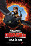 How to Train Your Dragon Masterdruck