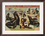 Forepaugh and Sella Brothers, Poster, 1900 Prints