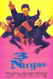3 Ninjas Masterprint