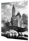 New York - Central Park - Snow Prints