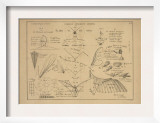 21 Figures about Aeronautics: Mechanics of Insect Flight and More Posters by Ferdinand Tollin