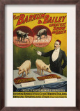 Barnum and Bailey, Poster, 1900 Poster