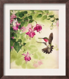 Hummingbird with Flowers Posters