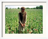 An Afghan Farmer Working Framed Photographic Print