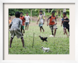 Chickens Run to Avoid a Soccer Game Played by Children from Lolovoli Village on the Island of Ambae Framed Photographic Print