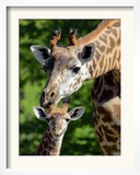 Bridgit and Her 3-Week Old Son Mac Framed Photographic Print