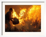 A Local Resident Throws a Bucket of Water on a Forest Fire Framed Photographic Print