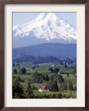 Mount Hood over Houses Scattered amongst Orchards and Firs, Pine Grove, Oregon Framed Photographic Print by Don Ryan