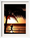 A Afternoon Runner Passes Under a Palm Tree as the Sun Sets Behind Framed Photographic Print