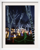 Christmas Lights, Saugus, Massachussets Framed Photographic Print by Lisa Poole