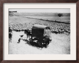 A Drover Travels with His Covered Wagon and Sheep on the Geelong-Baachus Marsh Road Framed Photographic Print