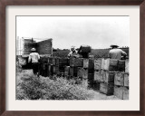 Mexican Farm Laborers Framed Photographic Print